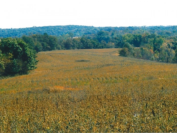 1 buffalo ridge prairie fall 2001