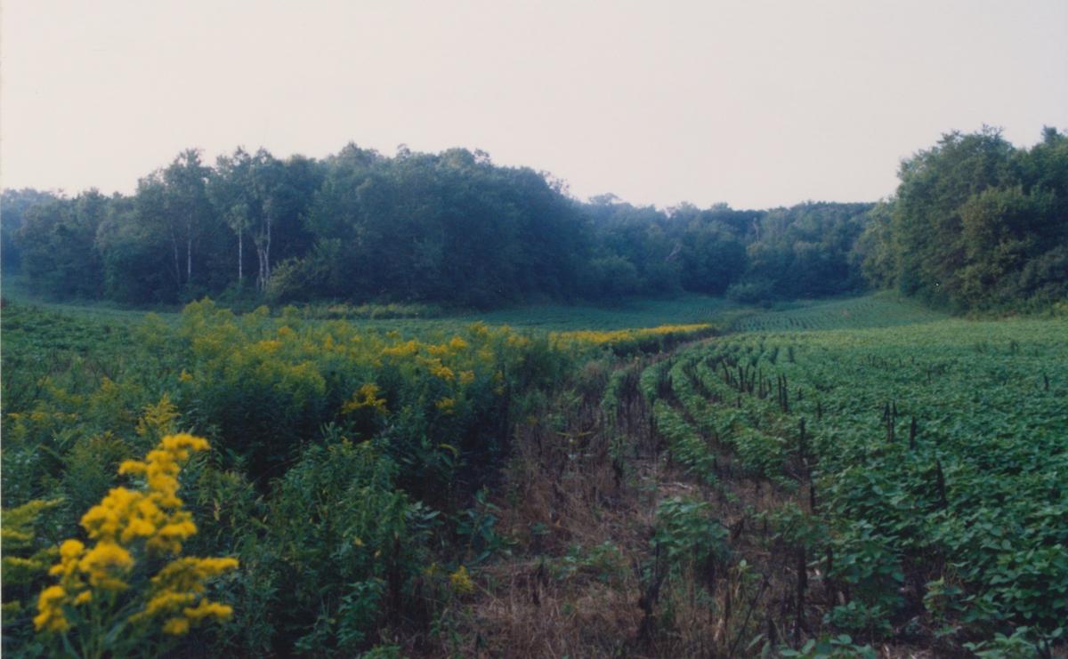 summer 2000 3 finger valley 2
