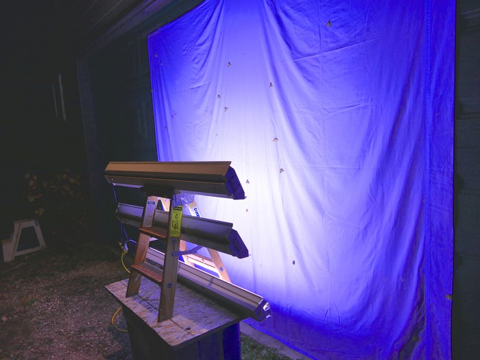 moth light set up 10-16-14 1