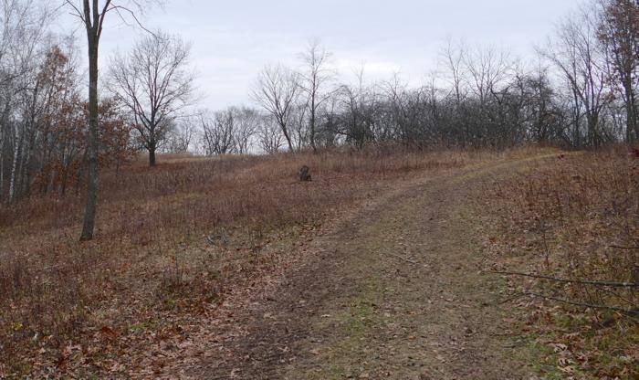 hidden oaks meadow project 3 done