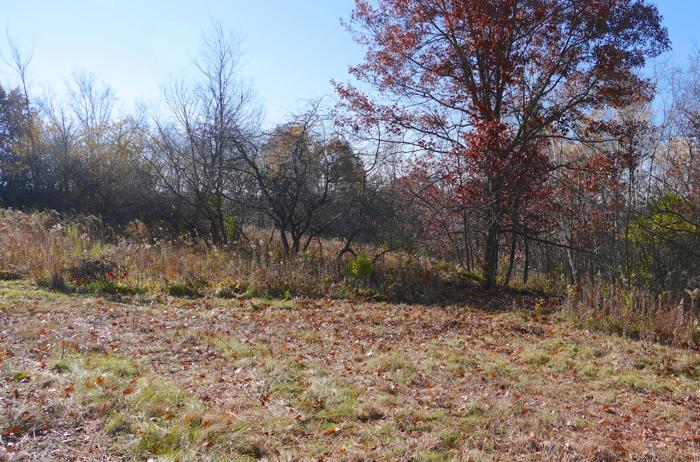 hidden oaks meadow project before 1