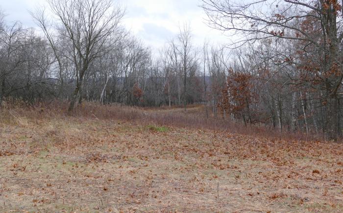hidden oaks meadow project done