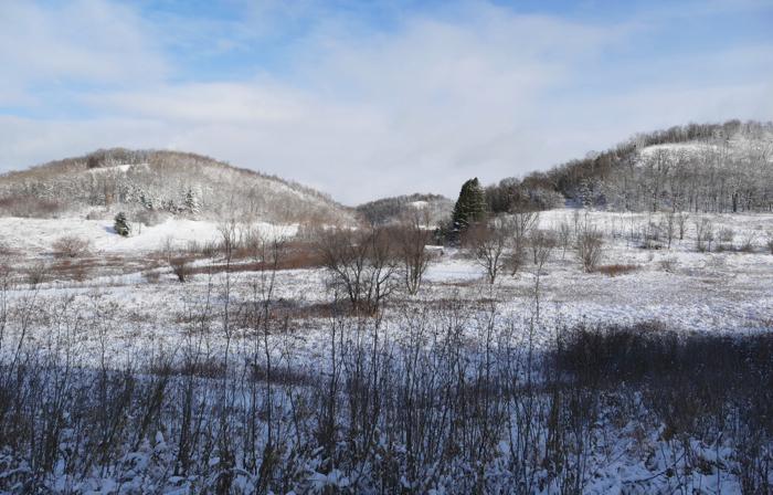 snowy farm view