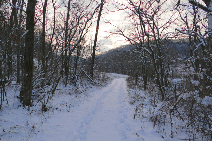 cabin road 12-28-14
