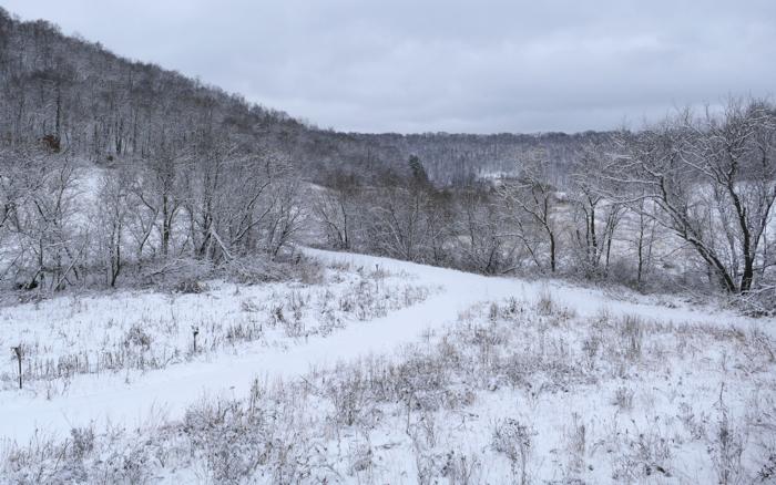 snow in center valley 12-27-14