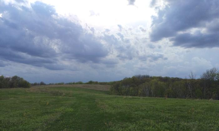 narrows prairie