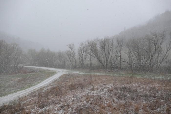 snow 4-21-15