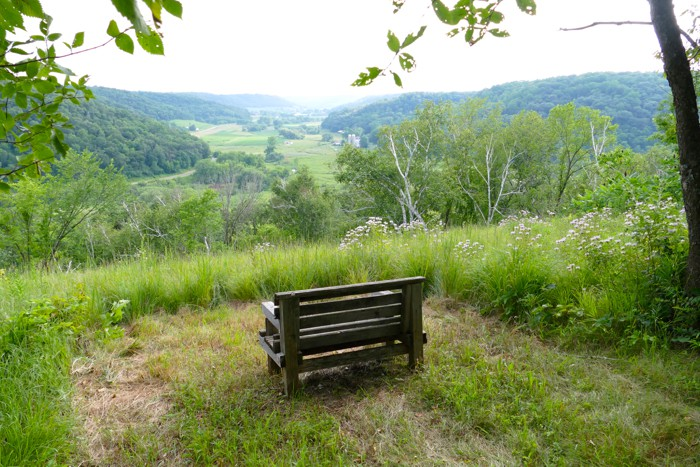 big view bench