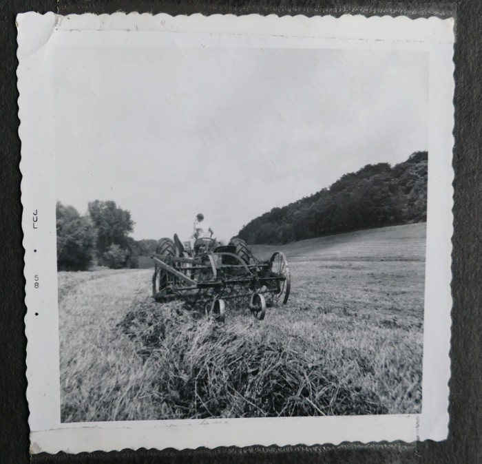 Haying in East Center Valley July 1958