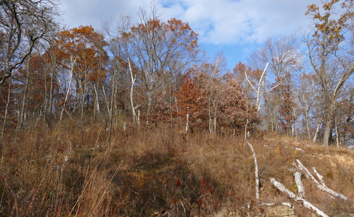 Indian Grass Point Path 10-25-15 2