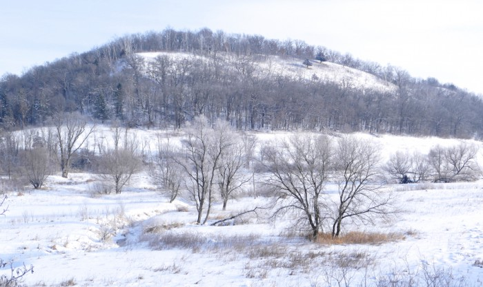 Sumac Prairie 1