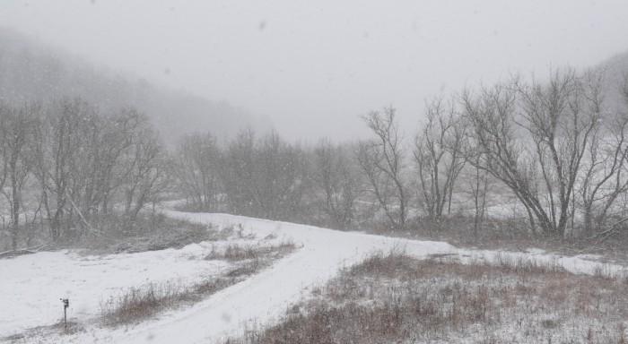 snowstorm 3-4-16 1
