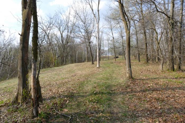 mowing hidden oaks 4-23-16