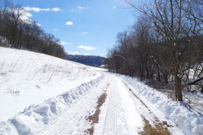 snow 3-25-16