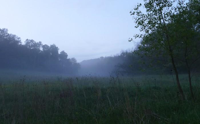 misty 2