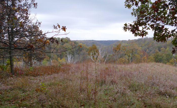 hidden-oaks-point-2