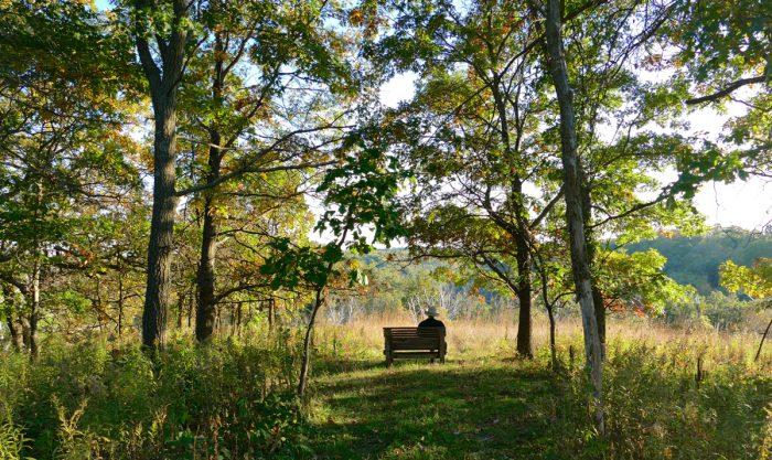 hidden-oaks-bench-10-3-16