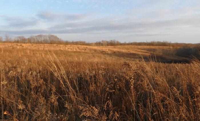 western-prairie-11-15-16
