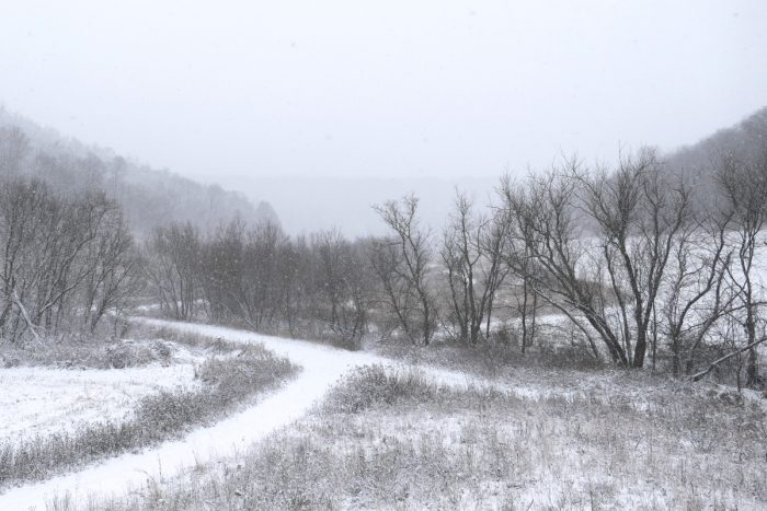 more-snow-12-4-16-1