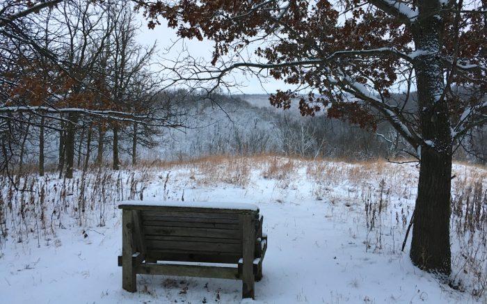 snowstorm-3